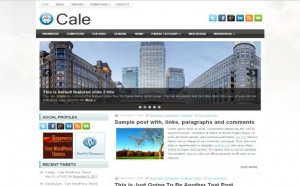 business-jquery-wordpress-theme.jpg