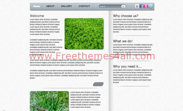 Free HTML5 Chrome Business Website Template