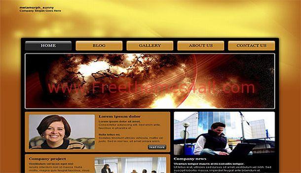 Free Sunny Orange CSS Website Template