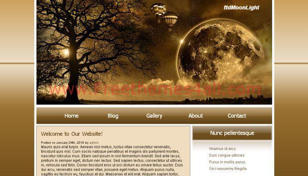 moon-light-css-template.jpg