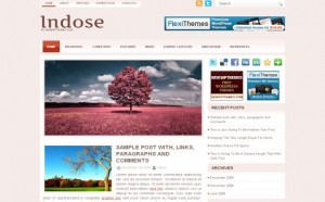 pink-wordpress-theme-template.jpg