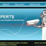Simple Blue Security Website Template