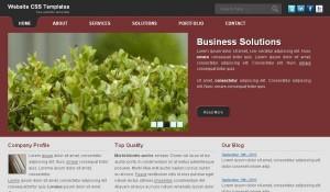 solution-business-template.jpg
