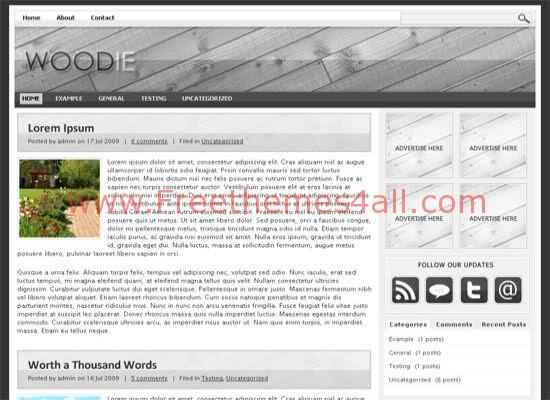 Woodie Gray Wordpress Theme