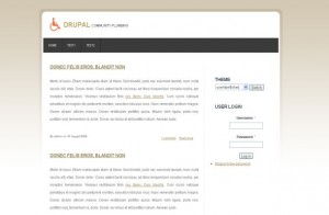 fresh-brown-business-drupal-theme.jpg