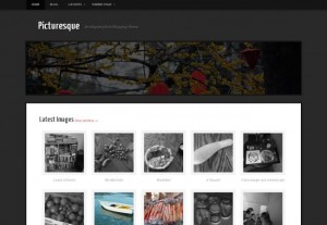Grunge Black Photography Wordpress Theme