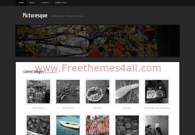 Grunge Black Photography WordPress Theme