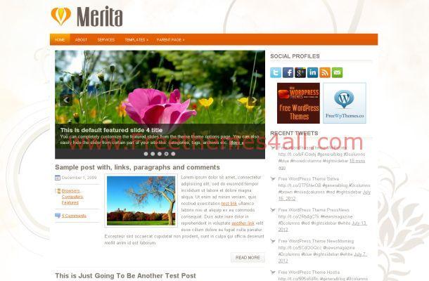 business-orange-wordpress-theme