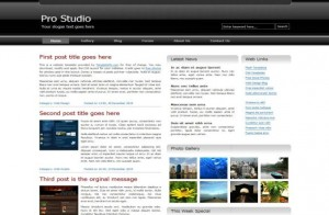 Silver Business Magazine CSS Template