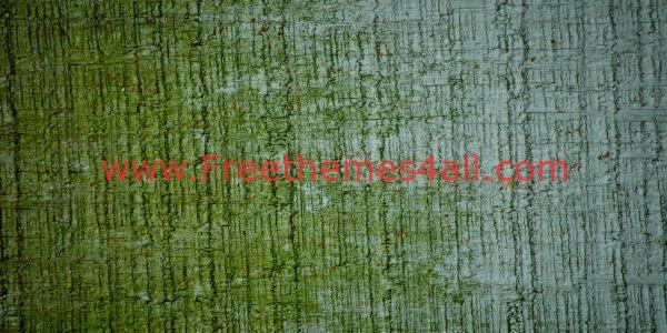 Grunge Wall Textures To Download