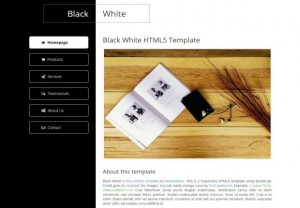 Business Black White CSS3 Template