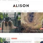 Alison Magazine Fashion Blogger Theme