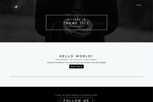Three Free Wordpress Photo Gallery Themes