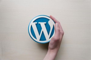 5 Things to Consider When Building a WordPress Website