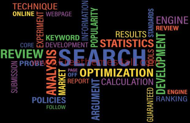 Major In Web Development, Minor In Search Engine Optimization