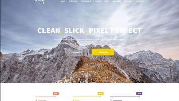 Responsive Corporate Web Designer WordPress Theme