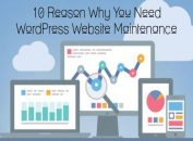 10 Reason Why You Need WordPress Website Maintenance